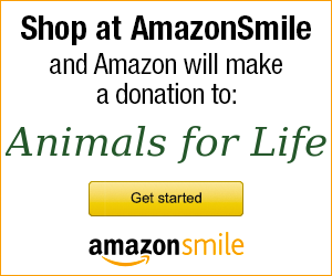 hotv_amazon_smile_personalized